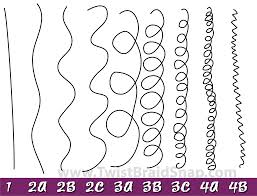 Hair types ranging from 1-4
